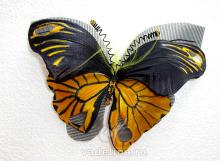 Бабочка «Пики»