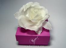 Роза белая «Невеста»