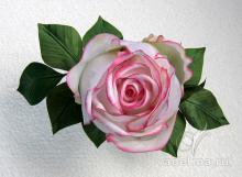 Роза-бутон, бело-розовая