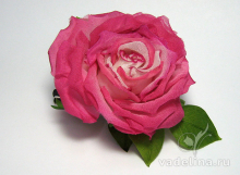 Роза раскрытая розовая